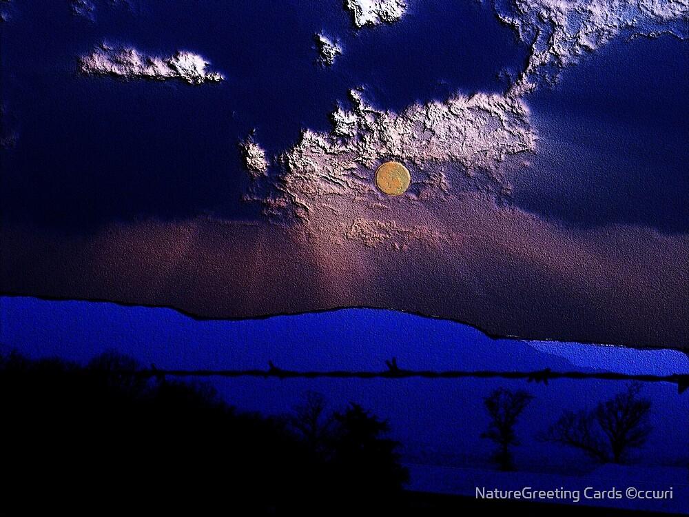 Moon Struck by NatureGreeting Cards ©ccwri