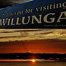 Willunga December by bombamermaid