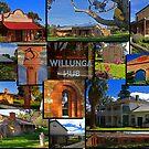 Willunga houses and community by bombamermaid