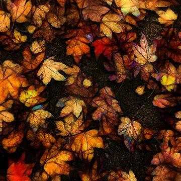 Late October Leaves 4 by bloomingvine