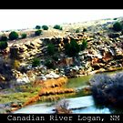 Canadian River Logan NM by Kendra Norton