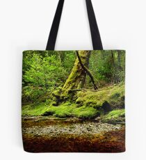 The shingle bank Tote Bag