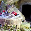 wild mouse eating at a tiny table by Simon-dell