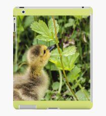 Gosling  iPad Case/Skin