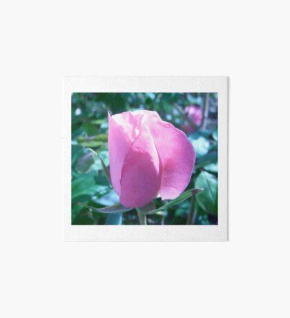 Pink Rose Art Board