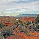 Southwest of Zion by Robert C Richmond