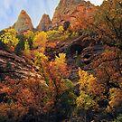 Rampant Splendor by Robert C Richmond