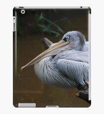 Having A Snooze - Pink Backed Pelican Perching On A Branch iPad Case/Skin