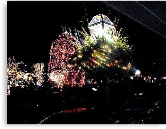 Nassau Street  Christmas  Princeton  by fiat777