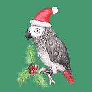 Christmas African grey parrot by Bwiselizzy