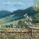 Carpathian hills by Vira Kalinovska