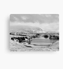 Snowfall at Lake Myvatn Canvas Print