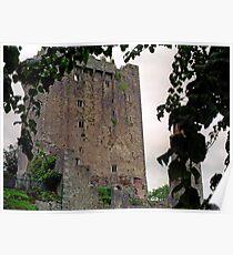 Blarney Castle, Ireland Poster