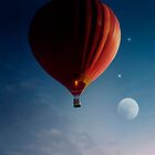 Fly Me To The Moon by Nikki Brown