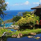 David Bowie's House in Mustique by niki2028
