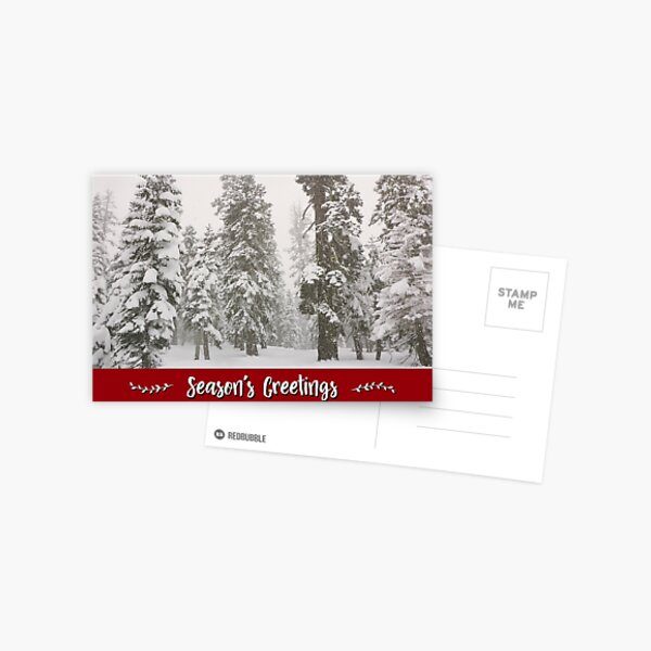 Snowy Forest Holiday Card Postcard