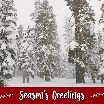 Snowy Forest Holiday Card by JaredManninen