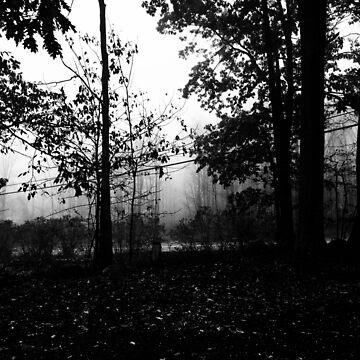 Fog  by cathpinc