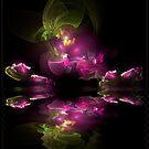 Flower Fractal Reflection by maf01