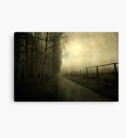 A gleam of light Canvas Print