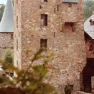 Reinhardstein Castle - Belgium by Gilberte