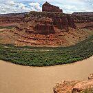 Colorado River in Canyonlands National Park by Adam Nixon