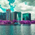 Panoramic of Lake Eola in Downtown Orlando, Florida by Adam Nixon