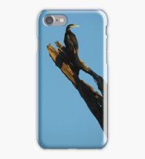 Great Cormorant iPhone Case/Skin