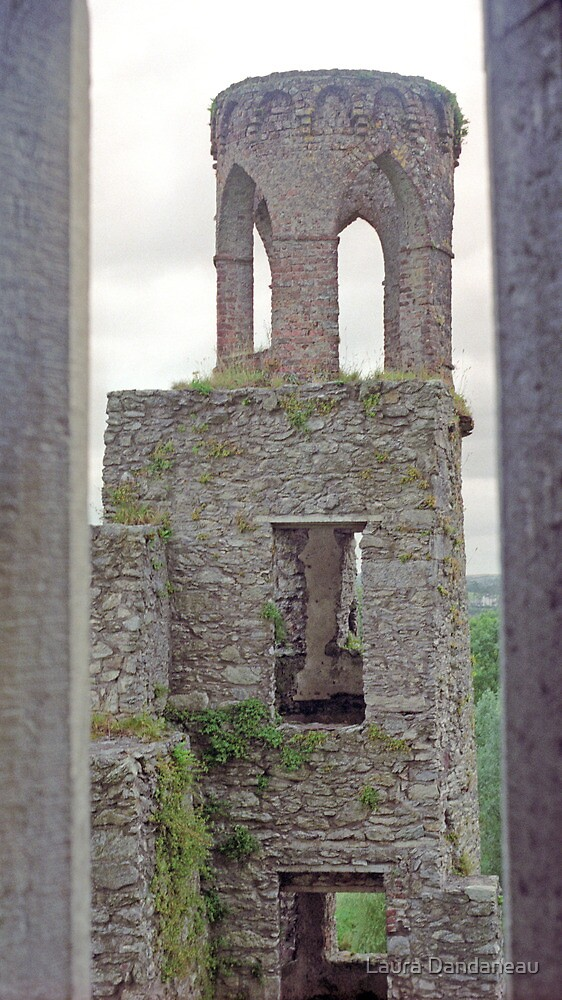 Tower, Blarney Castle by Laura Dandaneau