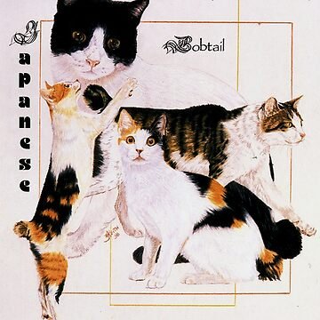 Japanese Bobtail by BarbBarcikKeith