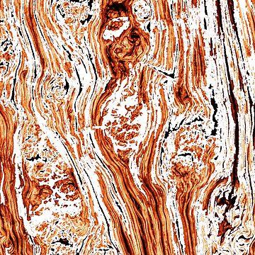 Mandarin Bark 2 by PatrickMHiggins