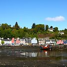Tobermory Harbour by Erland Howden