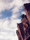 the Edge by schizomania