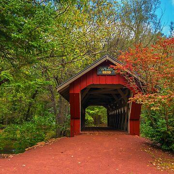 Bridge On Crystal River by JohnDSmith