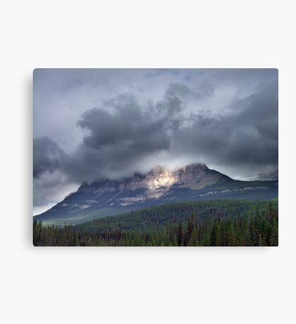 Spotlight Canvas Print