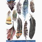 Watercolour Boho Feathers by Daniela Glassop