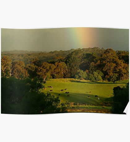 Late Light, Otway Farmlands Poster