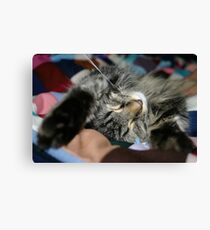 Cat stretched out sleeping on Colorful quilt Canvas Print