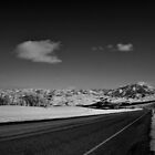 Snow Country In Black and White by Len Bomba