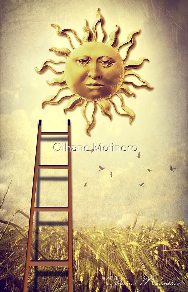 XIX. The Sun by Oihane Molinero