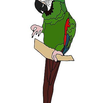 Severe Macaw by nolessjess