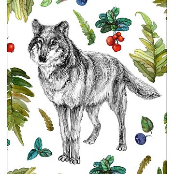 Wolf with fern and berries by stasia-ch