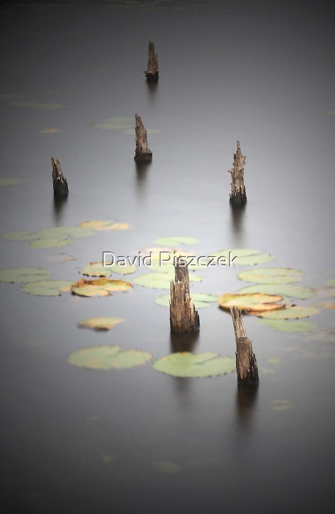 Lost Daydream by David Piszczek