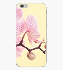Pink phalaenopsis orchid blossoms iPhone Case