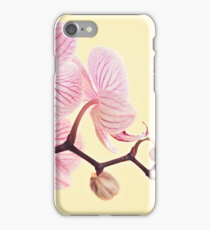 Pink phalaenopsis orchid blossoms iPhone Case/Skin