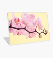 Pink phalaenopsis orchid blossoms Laptop Skin