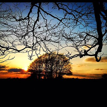 LS.125 - Gloucestershire sunset by Darling2425