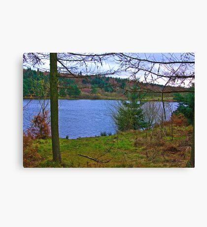 The Reservoir Canvas Print