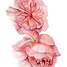 English Rose by artofsuff