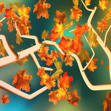 Maple Leaves in the Fall by RoxanneG